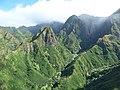 Starr-151005-0201-Aleurites moluccana-aerial view-West Maui-Maui (25677974784).jpg