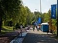 Stawiki Sosnowiec Droga Rowerowa.jpg