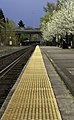 Stay behind the yellow line (8597326454).jpg