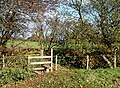 Stile by Squintum Coppice, Shropshire - geograph.org.uk - 606833.jpg