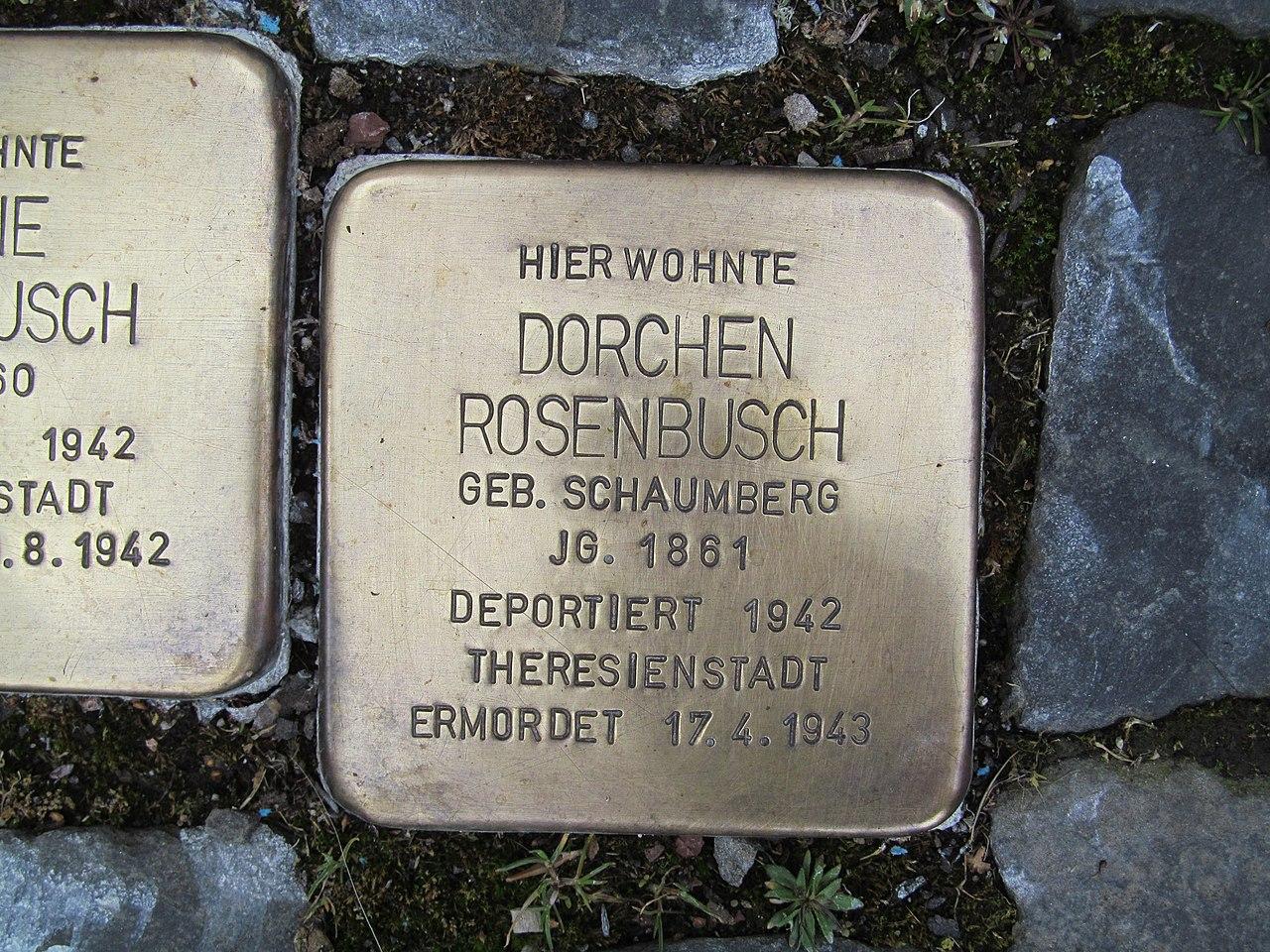Stolperstein Dorchen Rosenbusch, 1, Marktstraße 6, Borken, Schwalm-Eder-Kreis.jpg