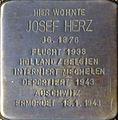 Stolpersteine Köln, Josef Herz (Klettenberggürtel 11).jpg