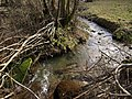 Stream near Brockle Ford - geograph.org.uk - 1733166.jpg
