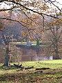 Studley Park - geograph.org.uk - 1595391.jpg