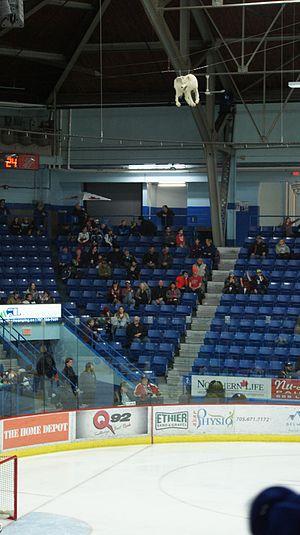 Sudbury Community Arena - Image: Sudbury Wolves Goal Celebration