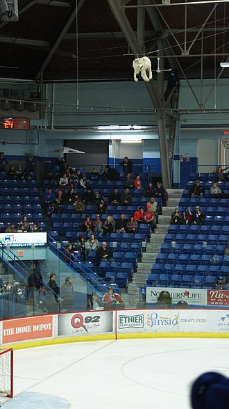 Sudbury Community Arena - Image: Sudbury Wolves Goal Celebration