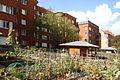 Suresnes - Jardins familiaux (4).JPG