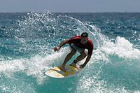 Surfing in Hawaii unmodified.jpg