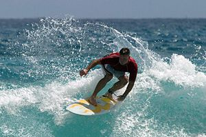 Colorfulness - Image: Surfing in Hawaii unmodified