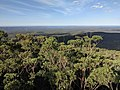 Sussex Inlet from Jerrawangala lookout.jpg