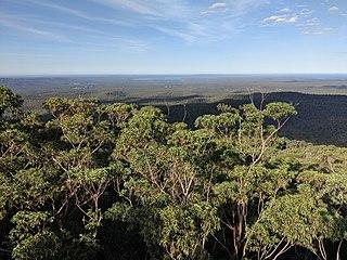 Jerrawangala Town in New South Wales, Australia