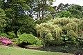 Swansea, Clyne Gardens - geograph.org.uk - 185413.jpg