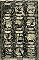Symbolographia, sive De arte symbolica sermones septem (1702) (14744553041).jpg