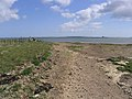 Tealhole Point - geograph.org.uk - 444276.jpg