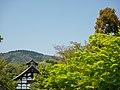 Tenryuji Temple in the Trees - Kyoto (28310114118).jpg