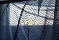 Texture (2210936878).jpg