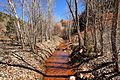The 13 mile return trail, Kolob Canyons, Walk to the Kolob Arch (Zion National Park) (3440114872).jpg