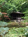The Japanese Garden at St Mawgan - geograph.org.uk - 1422526.jpg