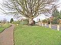 The New Half Mile Tree - geograph.org.uk - 654343.jpg