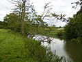 The River Derwent south of Paradise Farm - geograph.org.uk - 540771.jpg