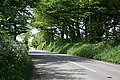 The Road to Bray Shop - geograph.org.uk - 438357.jpg