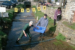 English: The Village Duck Race Held each Febru...