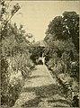 The dwelling house (1897) (14741346516).jpg