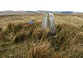 The trig point on Collin Hags - geograph.org.uk - 742145.jpg