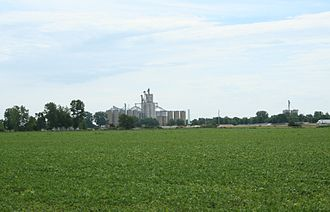 Thomasboro, Illinois - Thomasboro Illinois grain elevators.