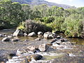 Thredbo-River Crackenback rocks.jpg