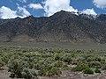 Toiyabe Range from Carvers, Nevada (2570771876).jpg