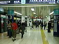 TokyoMetro-N06-Tameike-Sanno-station-platform.jpg