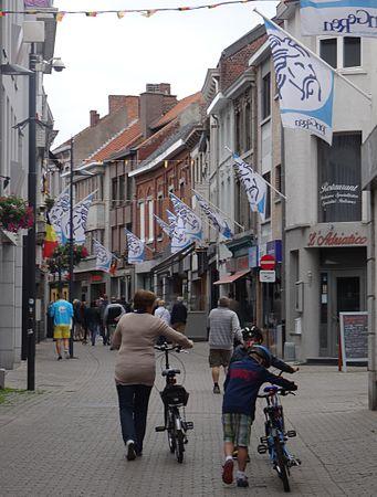 Tongeren - Ronde van Limburg, 15 juni 2014 (C71).JPG