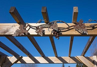 Top of pergola in Cateaux Luna vineyard.jpg