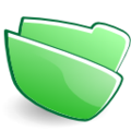 Torchlight folder green.png