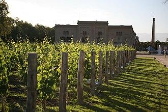 Trapiche (winery) - The Trapiche vineyard in Mendoza, Argentina.