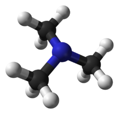 Trimethylamine-3D-balls.png