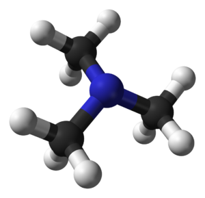 Trimethylamine - Image: Trimethylamine 3D balls