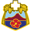 Tripler Army Medical Center dui.png