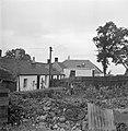 Tuin met groenten en rommel achter een van de huizen in Gretna Green, Bestanddeelnr 252-0161.jpg