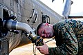 U.S. Marine Corps Cpl. John Fazio, a bulk fuel specialist with the Marine Wing Support Detachment based in Marine Corps Base Hawaii, attaches a fuel hose to a UH-60 Black Hawk helicopter while constructing 131118-A-UG106-227.jpg