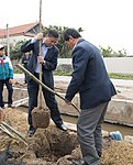 USAID supports tree planting in Nam Dinh Province (33162460152).jpg