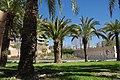 VIEW , ®'s - DiDi - RM - Ð 6K - ┼ , MADRID PARQUE de PEÑUELAS JARDÍN - panoramio (160).jpg