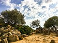 Valley of the Temples, Agrigento, Sicily - 49684962237.jpg