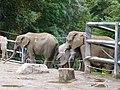 Verleihung der EGHN-Plakette an den Zoo Wuppertal 005.jpg