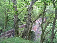 Viaduct, Dolgoch - geograph.org.uk - 1317362.jpg