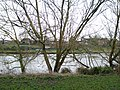 View from the bench (OpenBenches 4056-2).jpg
