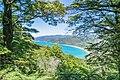 View of Totaranui Beach 01.jpg
