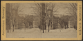 View of West Point, from Robert N. Dennis collection of stereoscopic views 2.png