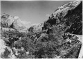 View up Zion Canyon from main road on hill. Angel Landing, center. - NARA - 520371.tif